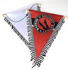 REDLIGHT DISTRICT VAAN - FLAG FANIO BY TRUCKJUNKIE